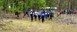 Schnuppertraining Wald- und Orientierungslauf ab 12 Jahre @ Trainingsraum Orientierungslauf (TROL) | Erkner | Brandenburg | Deutschland